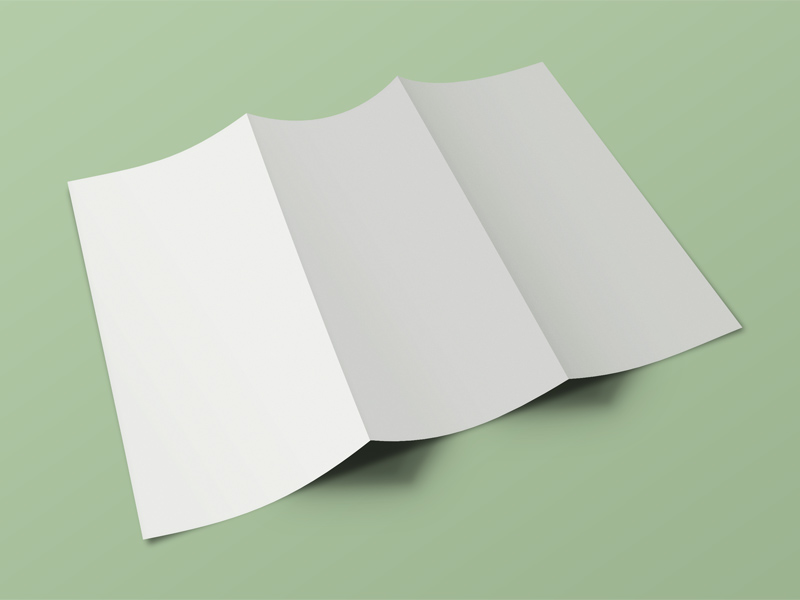 Free Front & Back Tri Fold Brochure Mockup download
