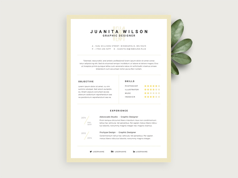 Elegant Resume Template Freebie  Download Photoshop Resource